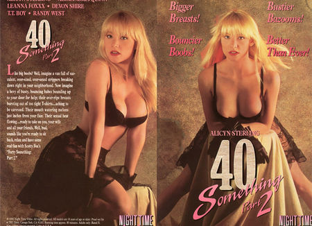 40 Something 2 (1991)